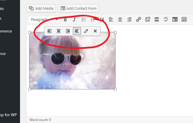 The WordPress Tutorial to publish a blog post: position your image in your post.